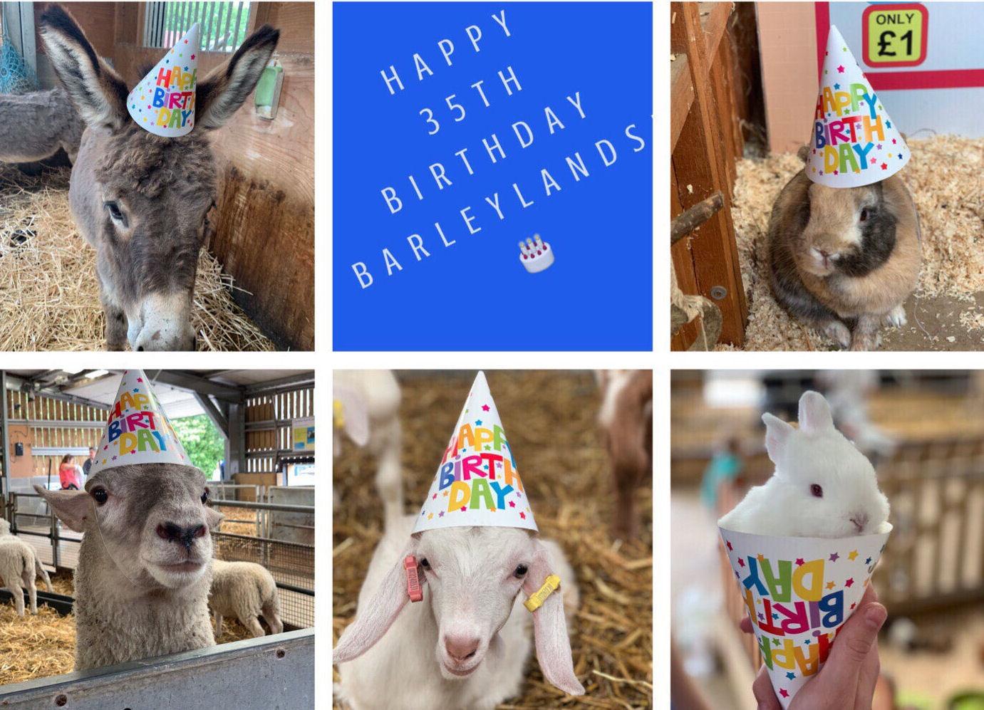Celebrate Barleylands 35th Birthday