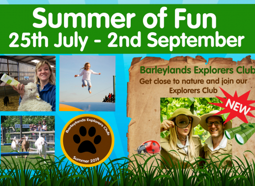 Summer at Barleylands Farm Park