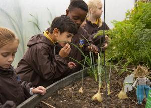 School Educational visit to Barleylands Farm Park in Billericay Essex